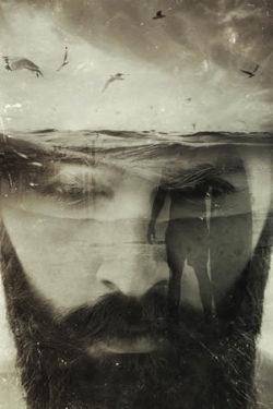 gesicht-mann-bart-sw-beard