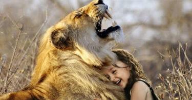 kind-loewe-lachen-lion