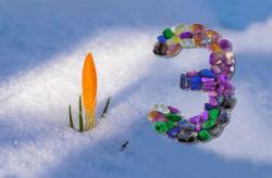 krokus-schnee-3-wuest-spring-awakening