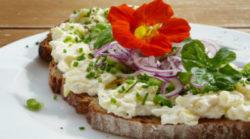 wildkraut-brot-bread