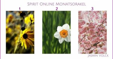 monatsorakel-jasmin-volck-april-18