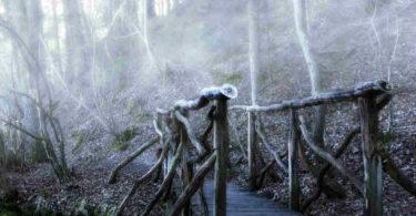bruecke-nebel-bridge