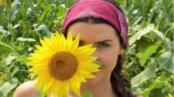 frau-sun-flower