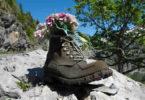 schuh-wandern-blumen-shoe