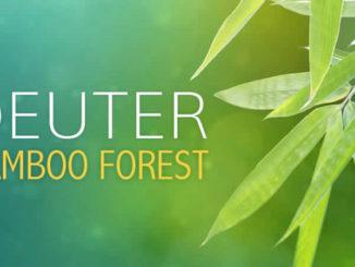 Deuter-bamboo-forest