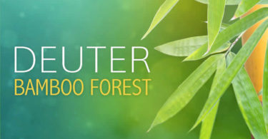 Deuter-bamboo-forest