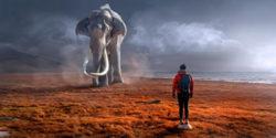 mammut-meer-strand-fantasy