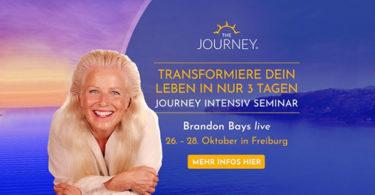 Bettina-hallifax-Brandon-Bays-Seminar-the-Journey
