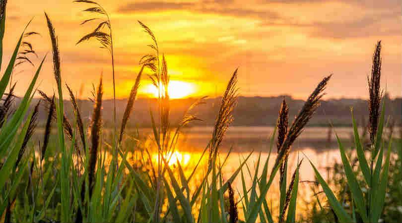 hoffnung-sunrise