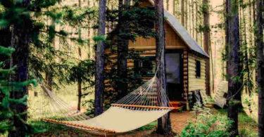 huette-wald-shack