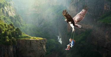 vogel-kind-nature