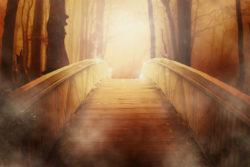 licht-bridge
