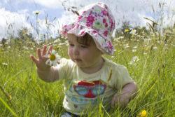 Spirituelle Intelligenz und Suche nach Sinn des Lebens wiese blumen baby