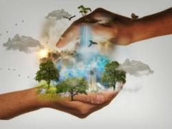 Paradigmen Wechsel-schuetzend-haende-nature-conservation