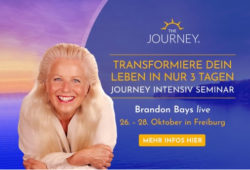 Bettina-hallifax-Brandon-Bays-Seminar-the-Journey