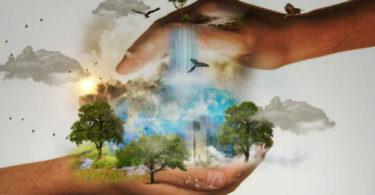 Paradigmen Wechsel-Spirituelle Intelligenz und Leben-schuetzend-haende-nature-conservation