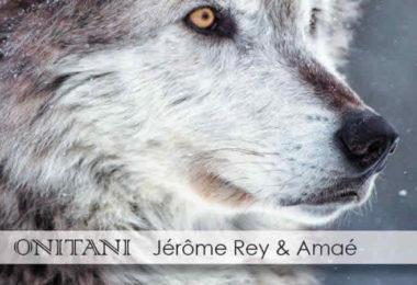 ONITANI-shamanic-healing-wolf