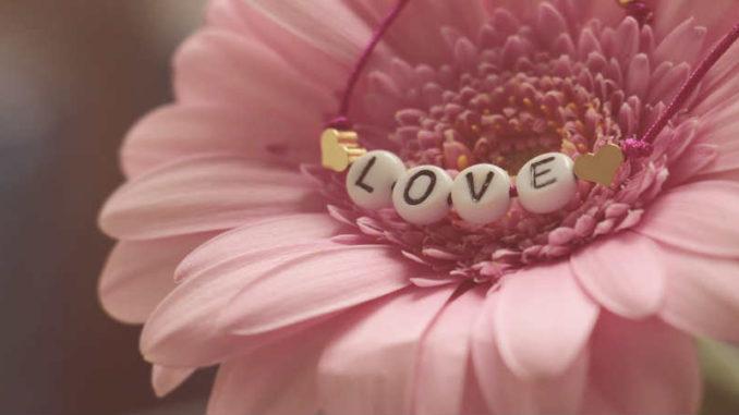 blume-love