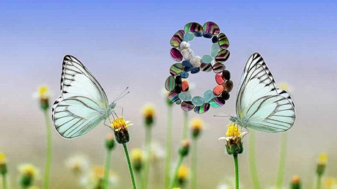 editha-wuest-august-acht-schmetterling-butterfly