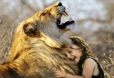 Botschaft hinter Tierkommunikation-loewe-maedchen-lion