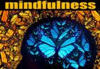 paul-avgerinos-mindfulness