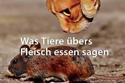 Sabine-Sebestyen-Buch-Fleischessen-cover
