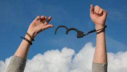Freier Wille freier wille