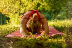 wirbelsaeule-ruecken-yoga