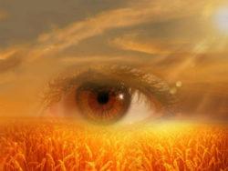 bewusstsein-achtsamkeit-gewahrsein-eye