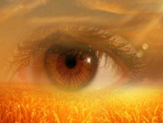 -bewusstsein-achtsamkeit-gewahrsein-eye