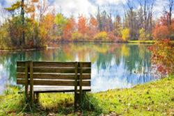 herbst-landschaft-see-wood-bench