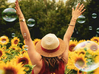 p-frau-sonnenblumen-wuensche-4k-wallpaper-blasen-bluehen