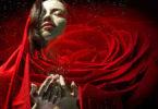 empathie-hochsenible-Menschen-rote-rose-woman