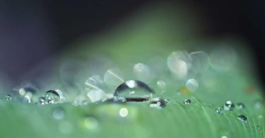wassertropfen-drop-of-water