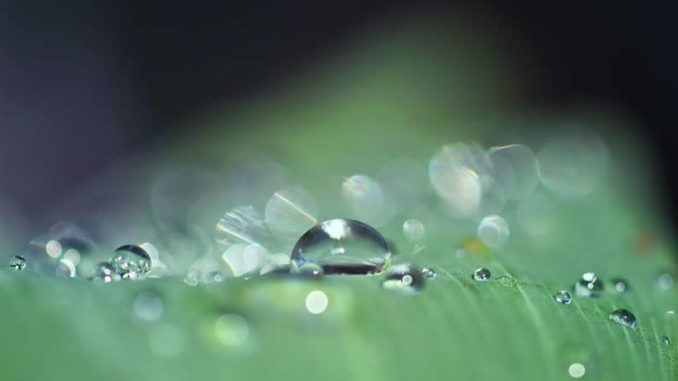 wassertropfen-drop-of-water
