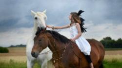 Reiki Tiere-Selbstwert-Wertschaetzung-Mensch-Natur-horse