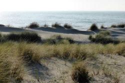 seelenreise-nordwijk-panorama-Bleser