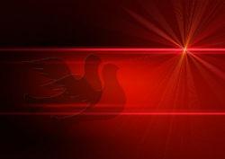 inneren-frieden-adventszeit-dove