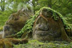 sland-elfen-gnome-naturwesen-control