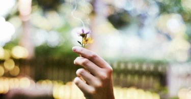 rituale-gewohnheiten-sicherheit-mut-flower
