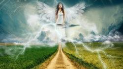 engel-kraftvolle-wegbegleiter-nature