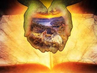 Seele und die Naturwissenschaftbuch-haende-mystik-licht-earth