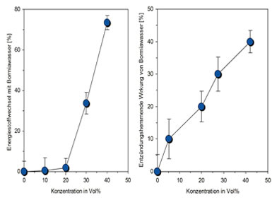 bormia-statistik-expertise-nadeen-althoff