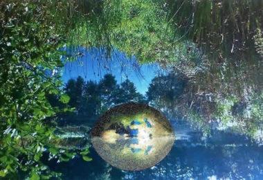 globale Achtsamkeit und globales Bewusstsein-traum-blaetter-wasser-erde-nature