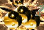 ying-yang-Video-plus-2