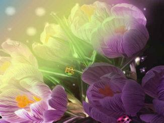 fruehjahrsmuedigkeit-erwachen-ich-bewusstsein-illustration