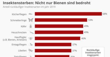insektensterben-statistika