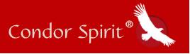 Logo-condor-spirit-jutta-kloeckner