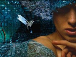 Emotionen-beeinflussen-Erinnerung-dreams