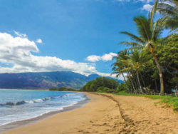 gefuehrte-radreise-hawaii2019-lion-tours-hawaii-strand